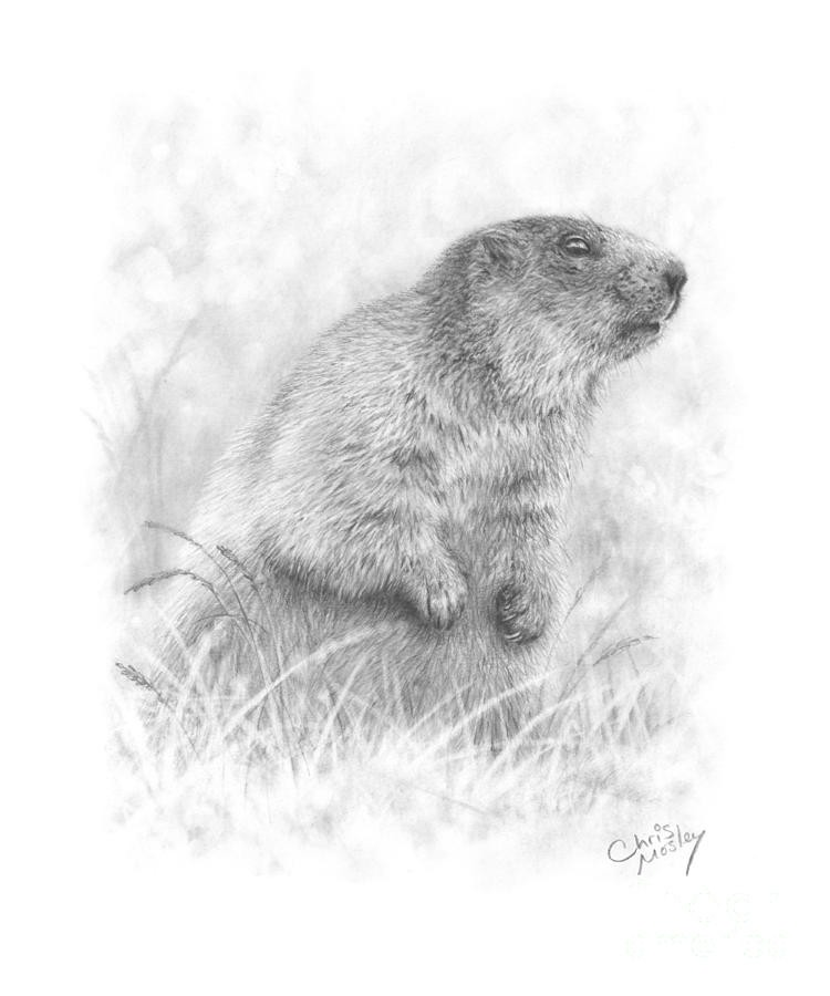 Grey realistic rodent standing in high grass tattoo design