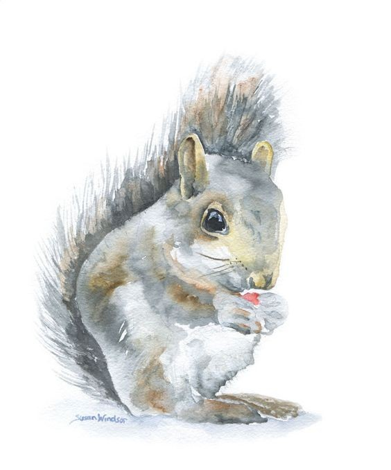 Grey watercolor squirrel with red berry in hands tattoo design