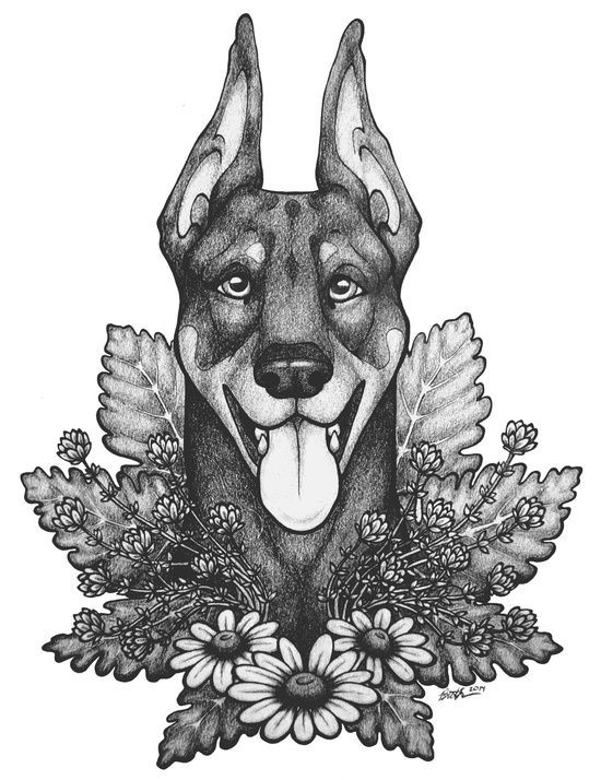 Happy grey-ink doberman head looking out of herbs tattoo design