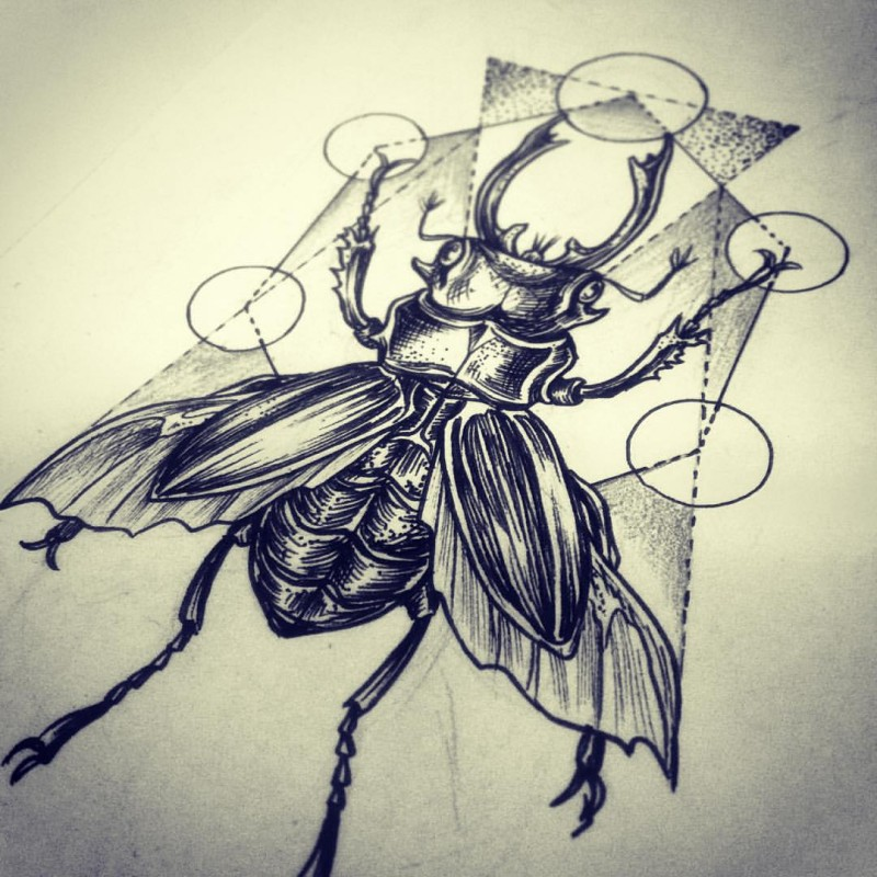 Harsh black-ink bug on interesting geometric background tattoo design