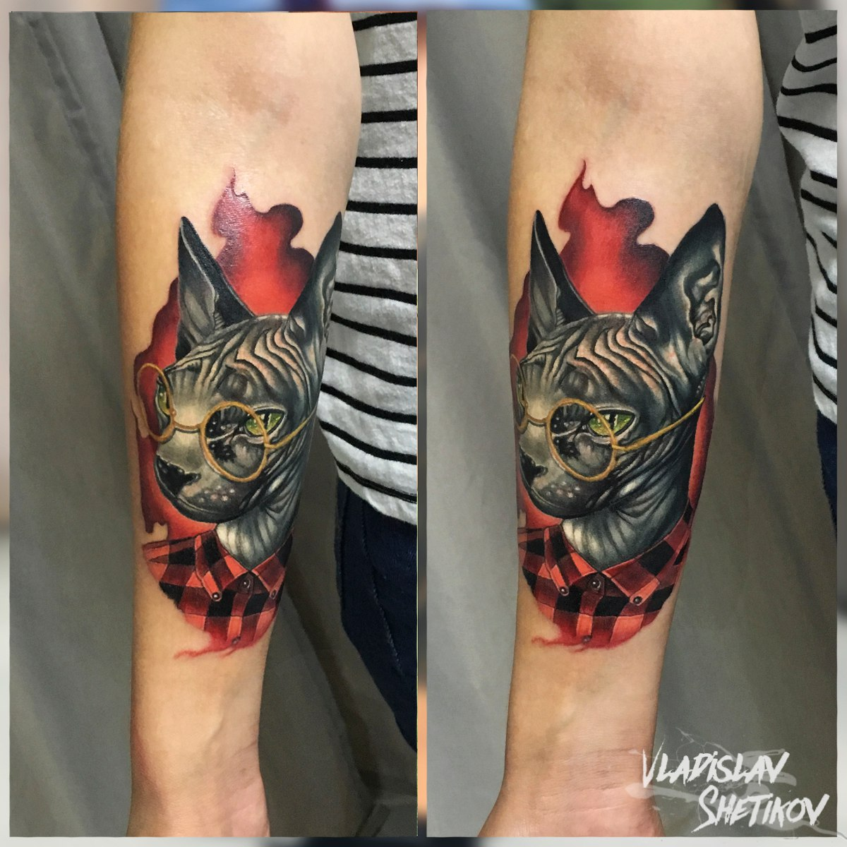 Hipster cat tattoo on forearm
