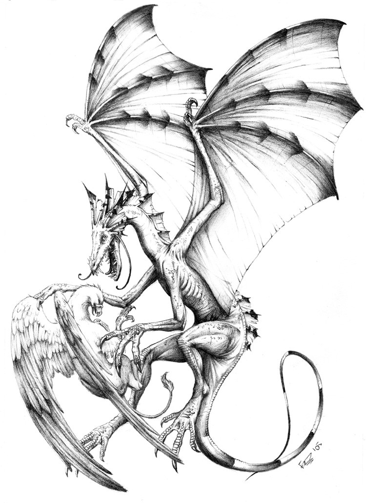 Hot grey-ink small griffin and huge dragon fight tattoo design by Sheil