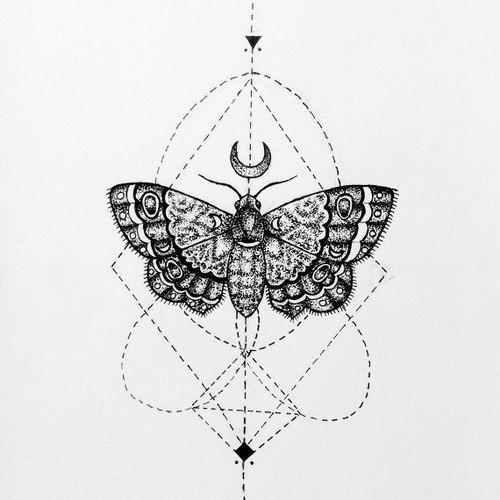 Impressive Open Winged Butterfly On Geometric Drawing