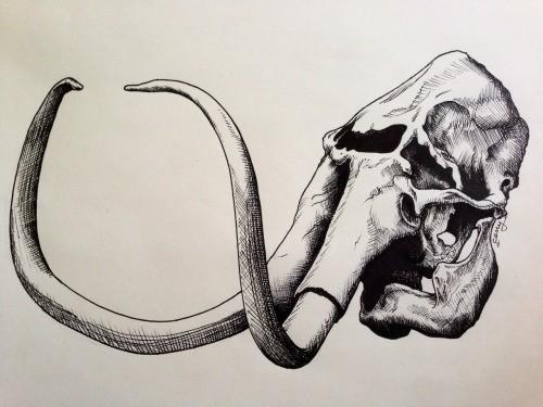 Impressive uncolored mammoth skull tattoo design