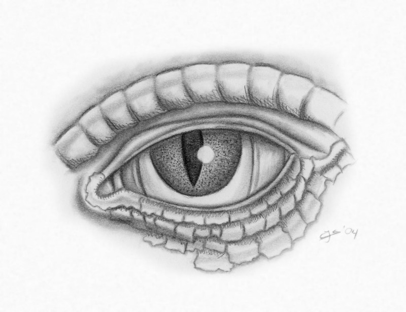 Indifferent grey-ink reptile eye tattoo design