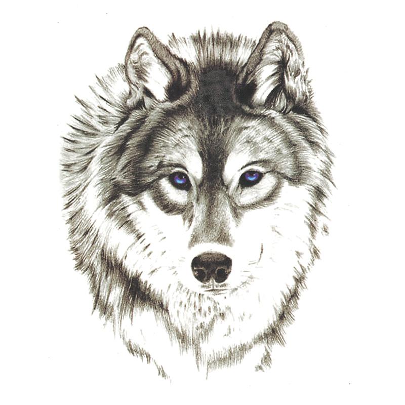Kind bright blue-eyed wolf portrait tattoo design