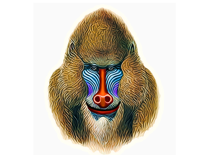 Kind multicolor baboon portrait tattoo design