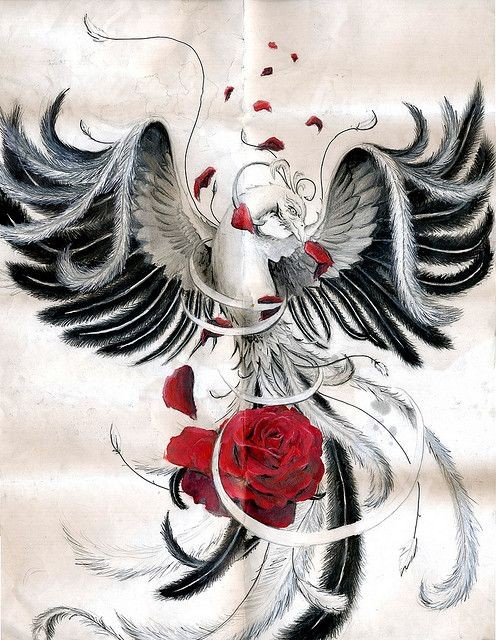 King black-and-white spread-winged phoenix and dark red rose bud tattoo design