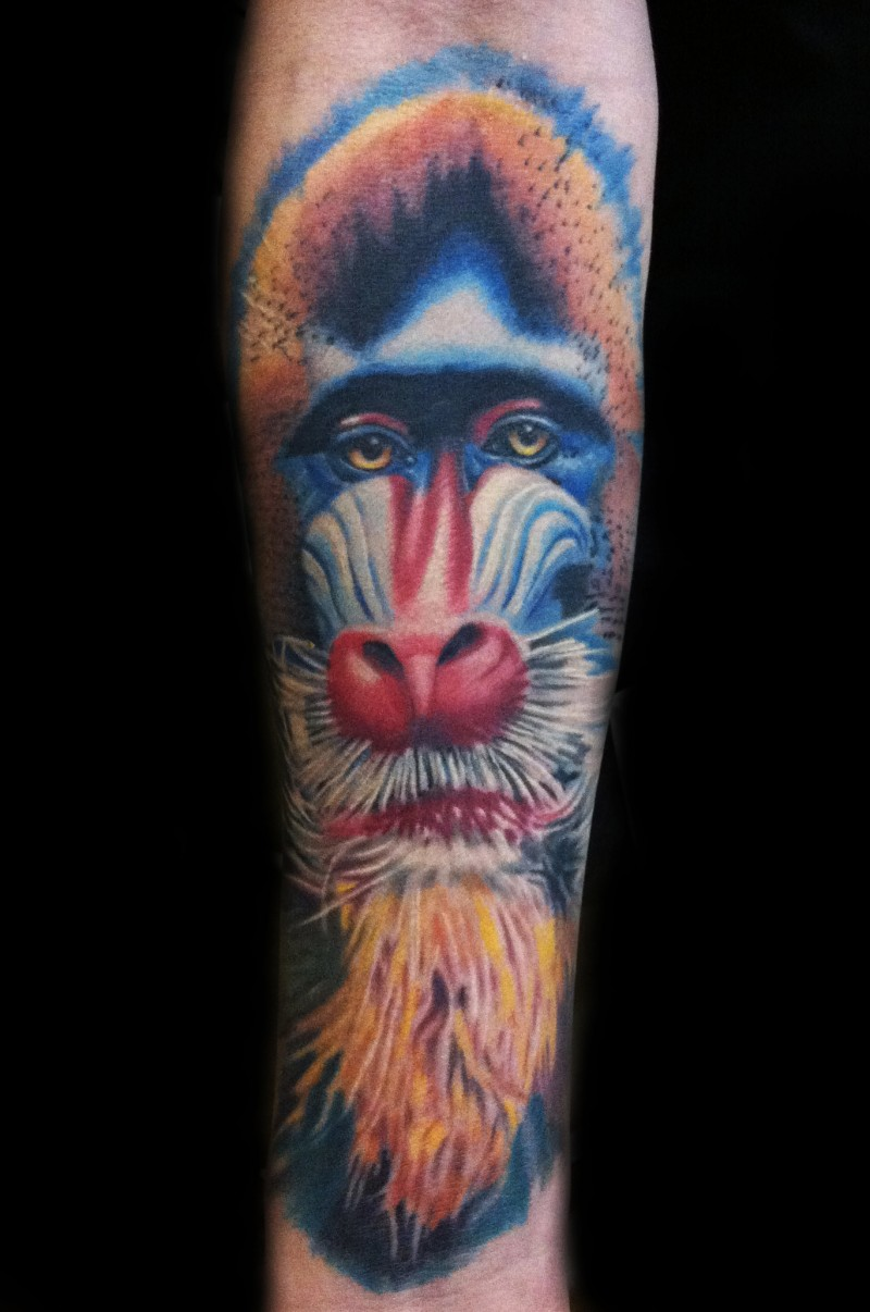 Large color-ink wise baboon head tattoo on arm