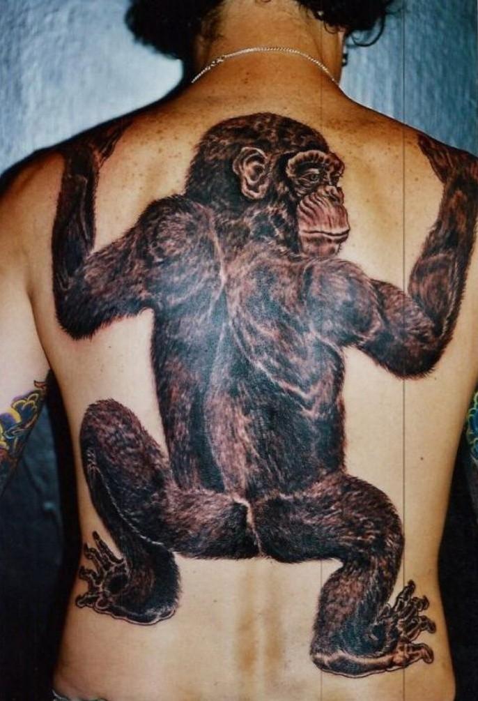 Großes beeindruckendes Farbtattoo von Schimpanse in Naturgröße auf dem Rücken