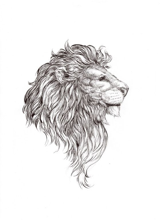 Lordy black-and-white lion portrait in profile tattoo design