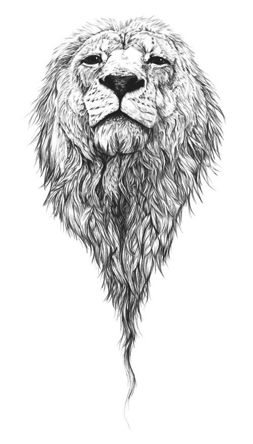 Lordy long black and white lion head tattoo design for Black and white lion tattoo