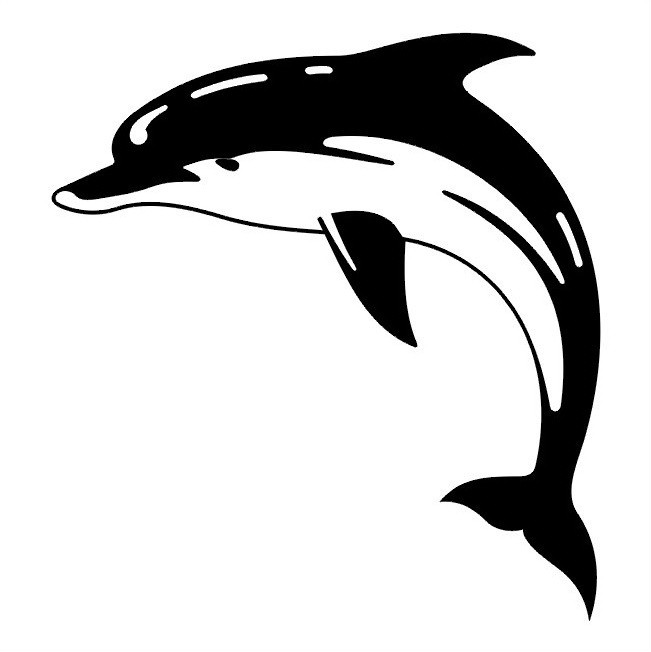 Lovely big black-and-white jumping dolphin tattoo design