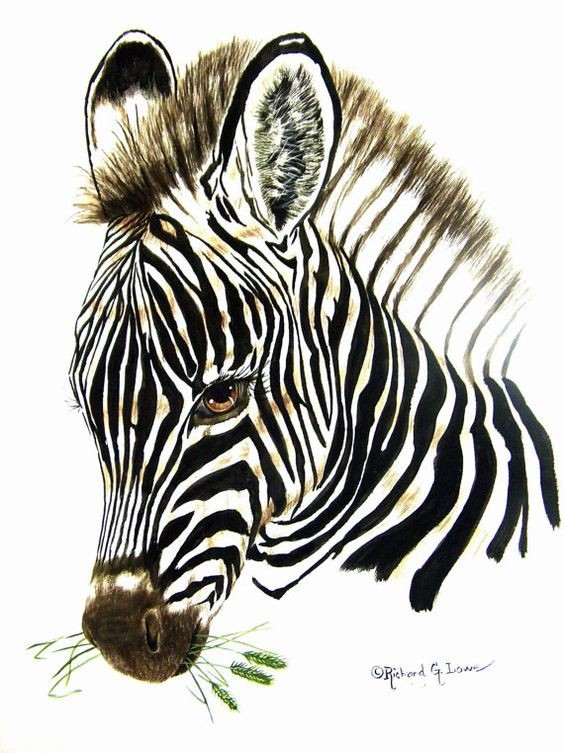 Lovely black-and-white brown-eyed zebra portrait tattoo design