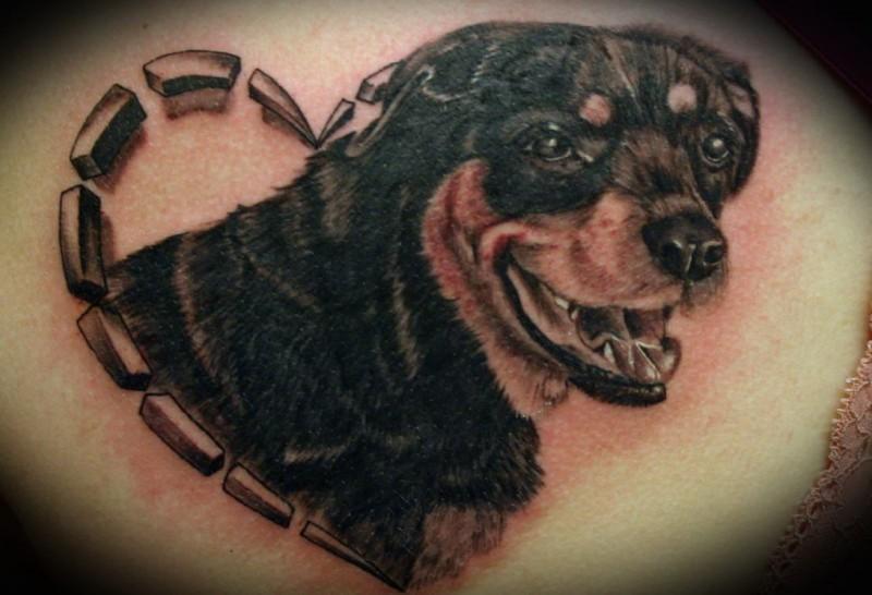 Lovely black-and-white rottweiler in heart tattoo