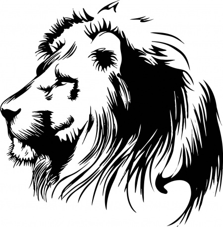 Lovely calm trial lion head in profile tattoo design