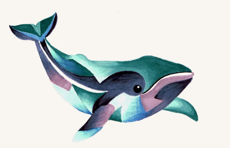 Lovely colorful whale tattoo design by Lamorien