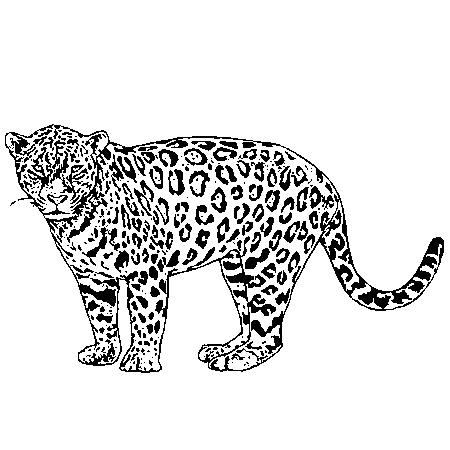 Lovely outline standing jaguar tattoo design