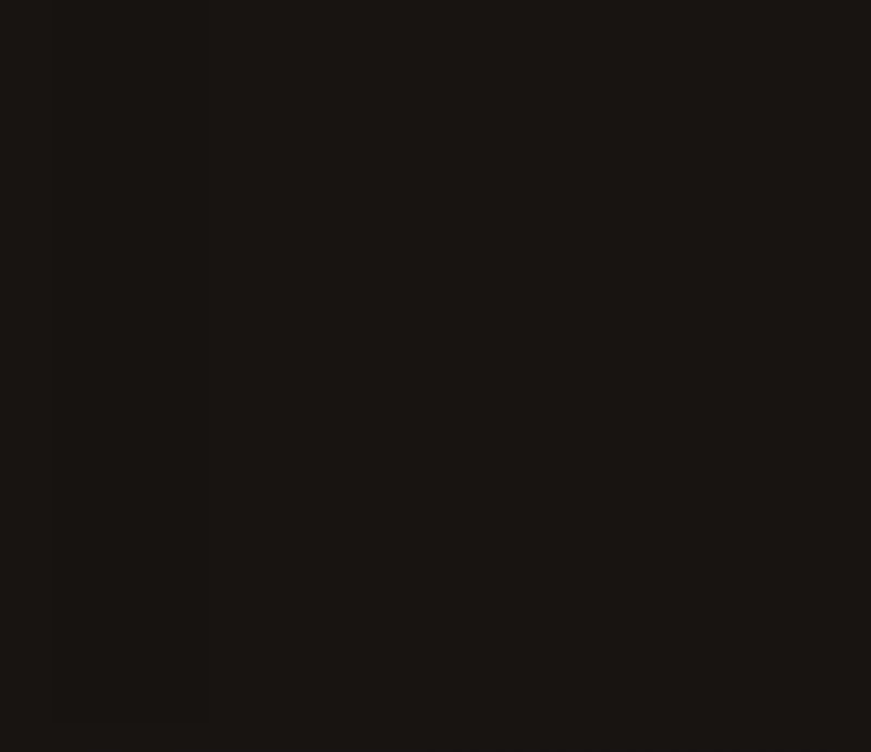 Lovely surprised tribal chameleon tattoo design