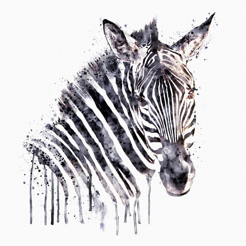Lovely watercolor style zebra head tattoo design