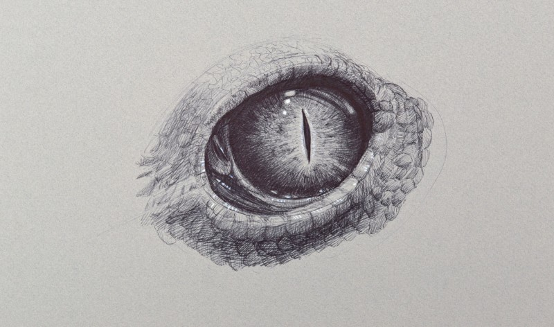 Mad grey-ink reptile eye tattoo design