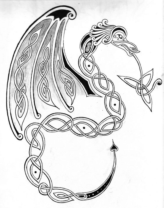 Nice black-and-grey celtic dragon tattoo design