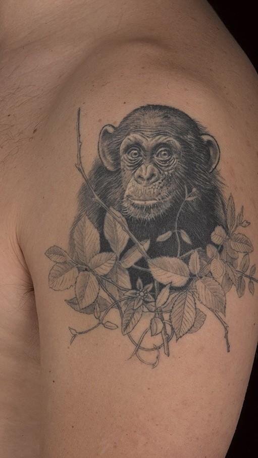 bello nero e bianco scimpanze` nei cespugli tatuaggio su spalla