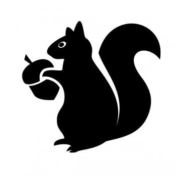 Nice black squirrel keeping acorn tattoo design