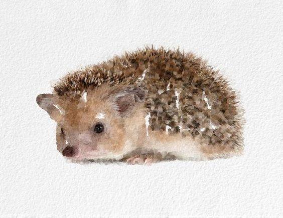 Nice brown hedgehog tattoo design