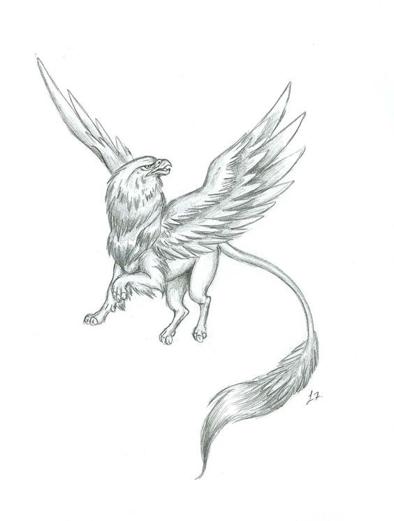 Nice pencilwork flying griffin with a long tail tattoo design