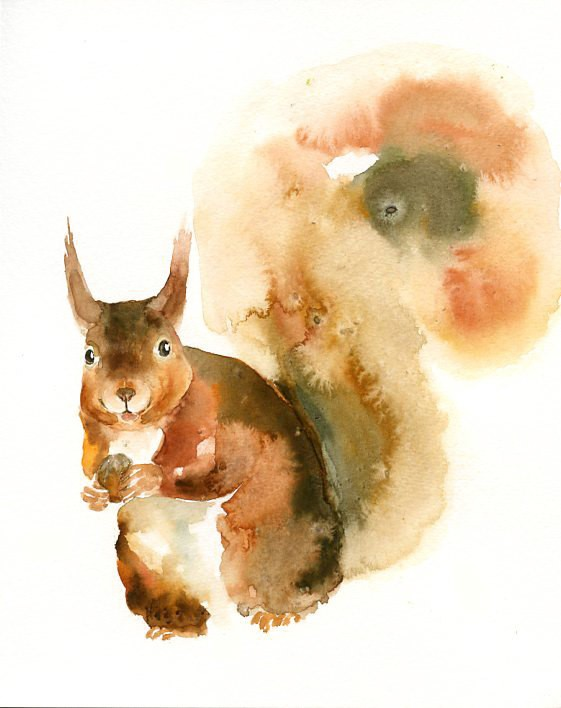Nice pleased watercolor squirrel tattoo design