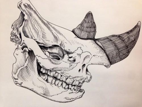 Nice smiling rhino skull tattoo design