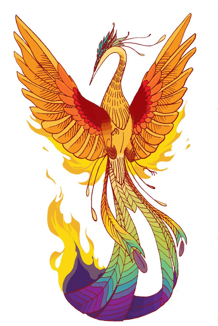 Orange animated phoenix with colorful tail tattoo design for Tattoo supply phoenix