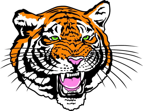 Orange green-eyed tiger muzzle tattoo design
