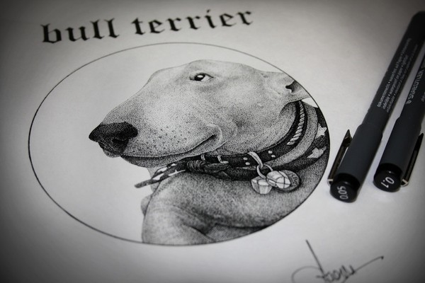 Outstanding realisti grey-ink bull terrier dog in collars tattoo design
