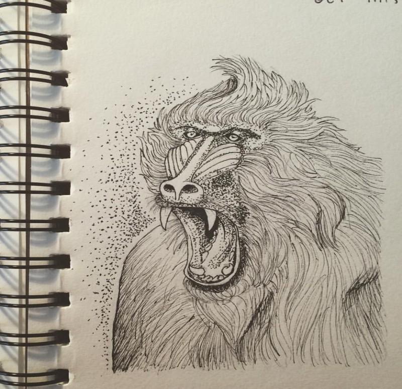 Pencilwork baboon portrait with dotwork elements tattoo design