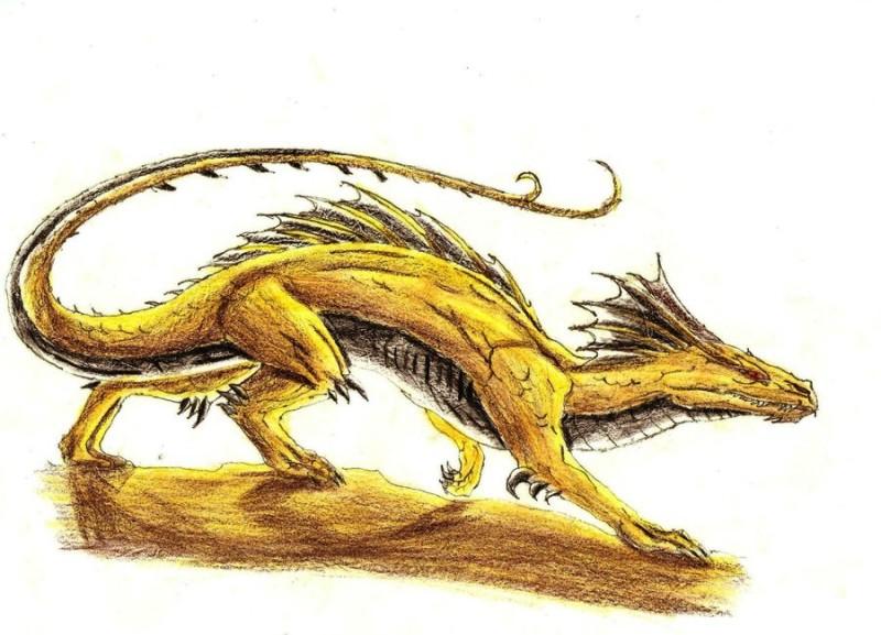 Pencilwork yellow dragon hunter tattoo design by Draken Angelus2
