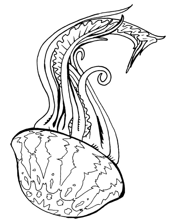 Plain outline jellyfish falling down tattoo design by Typhoon Cutter