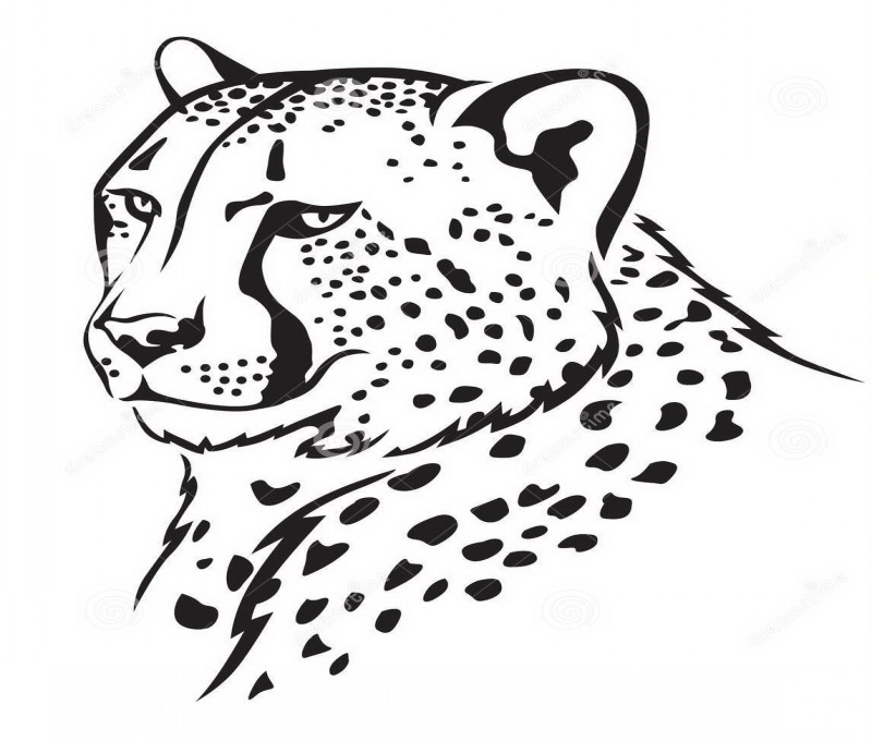 Pleased calm outline cheetah portrait tattoo design
