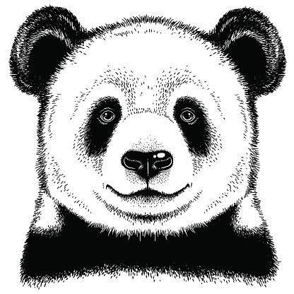Pleased panda bead portrait tattoo design