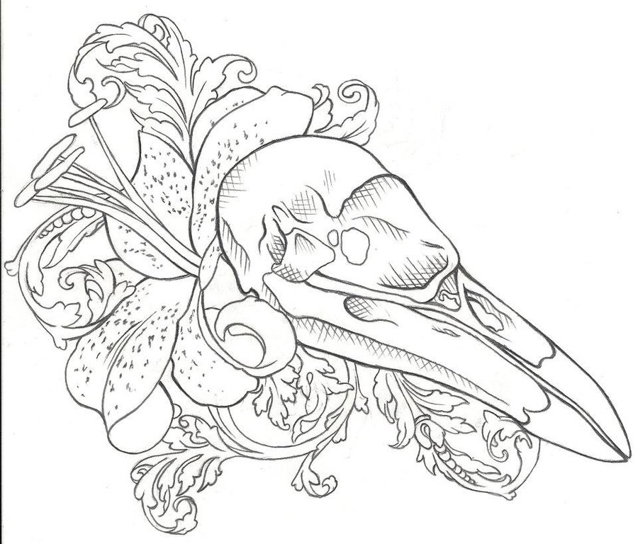 Raven skull and lily flower tattoo design by Jinx2304