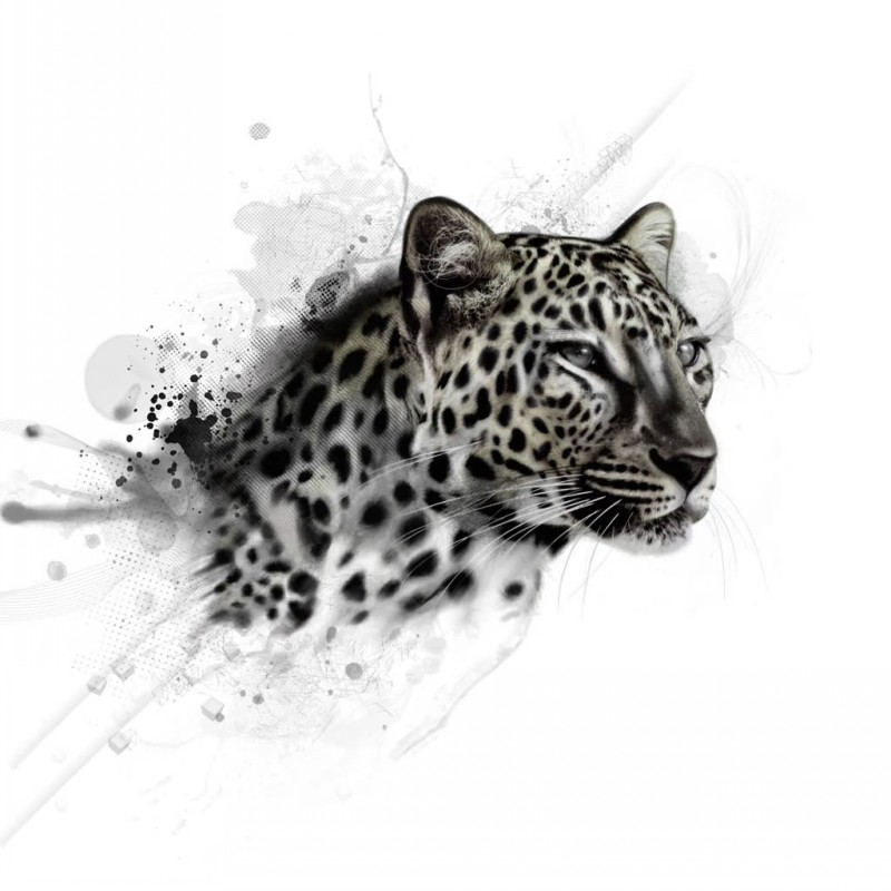 Realistic black-and-grey leopard face on dark watercolor background tattoo design