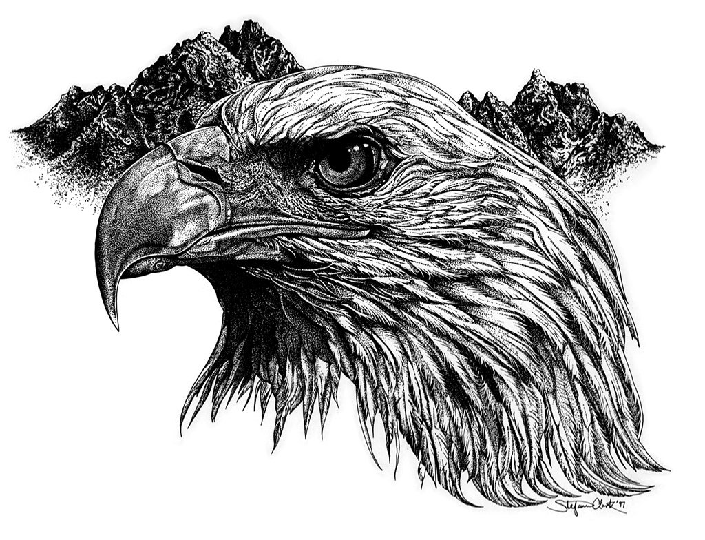 Realistic Black And White Eagle Head On Mountains