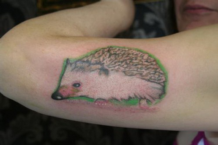 Realistic color-ink hedgehog tattoo on upper arm