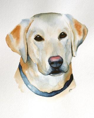 Realistic colorful dog portrait tattoo design