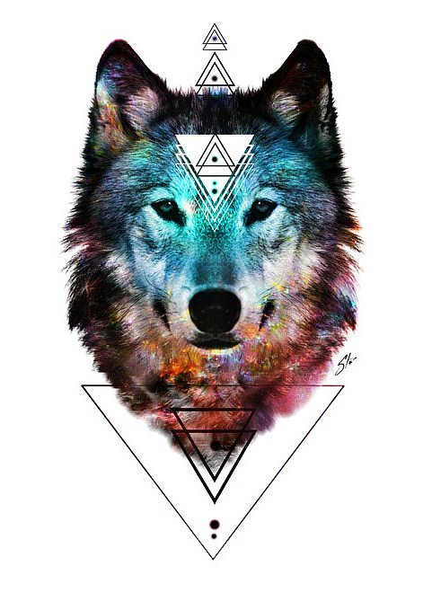 realistic colorful wolf head on geomertic pattern