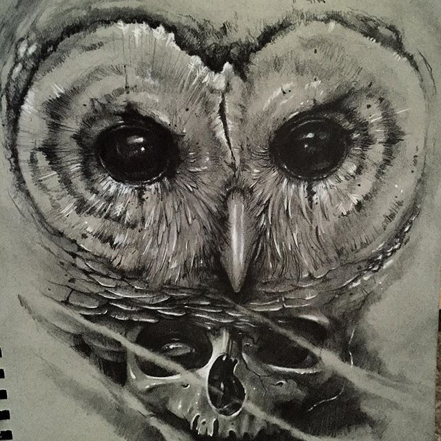 realistic greycolor owl face and a skull tattoo design