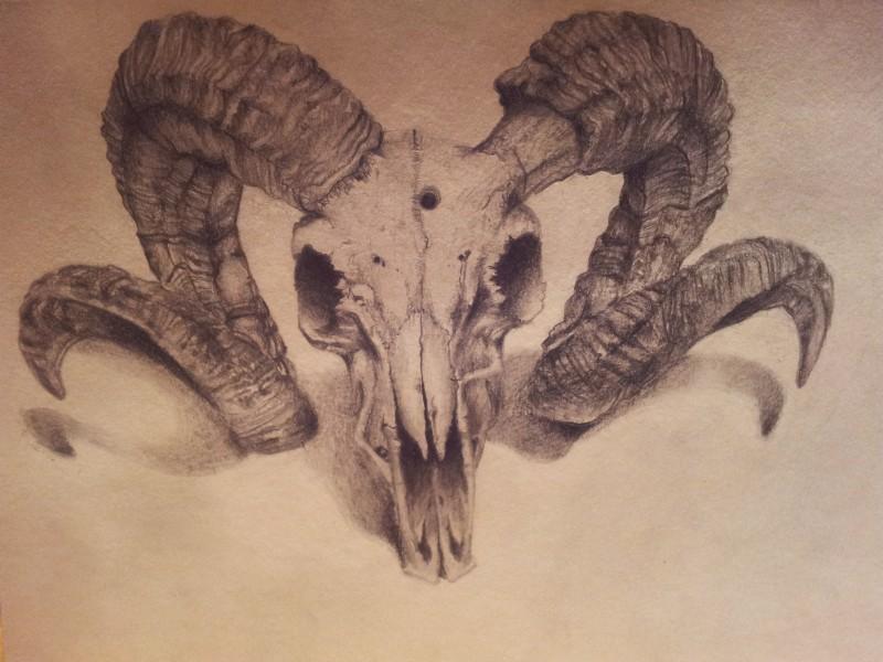 Realistic grey-ink ram skull tattoo design by Backhendl