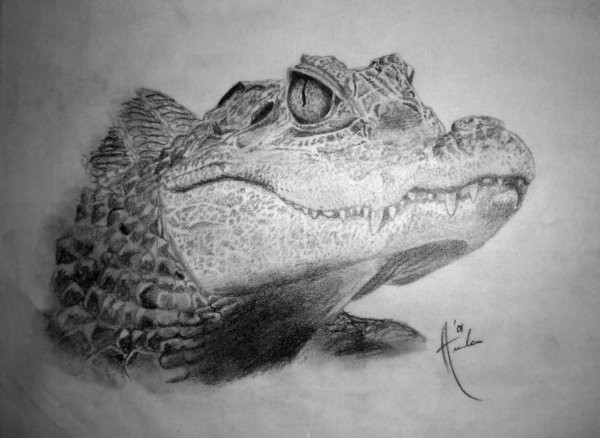 Realistic grey-ink reptile head tattoo design by Passionphyre