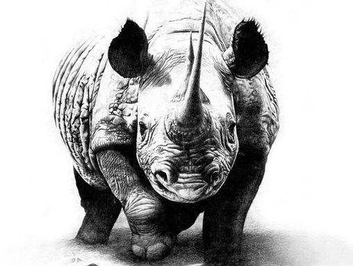 Realistic grey-ink rhino tattoo design